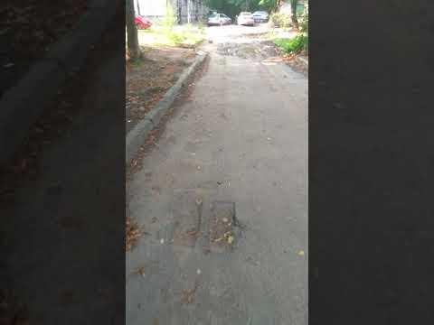 Все ужасы нашего дома по ул. Героев Севастополя,36а  и бльзьлежайшей територии возле дома.