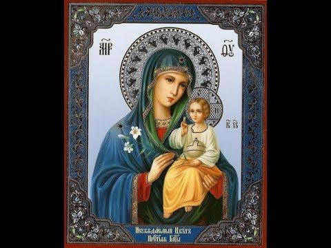 Download Godzinki ku czci Niepokalanego Poczęcia Najświętszej Maryi Panny