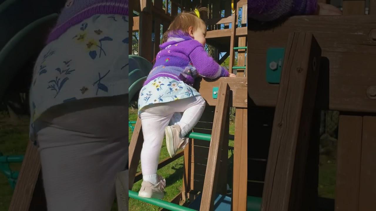 2020-05-12 Shea climbing ladder
