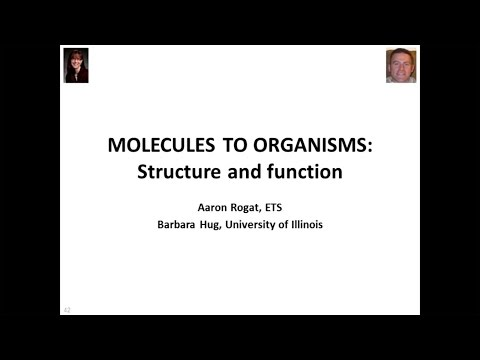 Next Generation Science Standards Core Ideas: From Molecules to Organisms: Structures and Processes