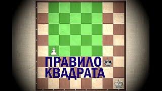 Шахматы. Урок 13. Правило квадрата. Король и крайняя пешка против короля