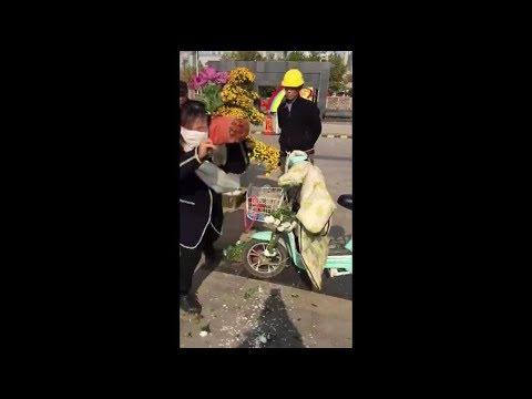 中国の菊の花展でマナー違反=勝手に持ち去り、阻止された女性は逆ギレ#女子菊花展强抢花,被阻后怒摔花盆#china flower event manner