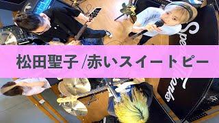 松田聖子 / 赤いスイートピー 【PUNK cover】