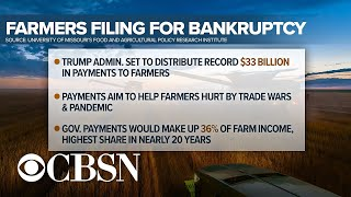 More farmers file for bankruptcy amid pandemic, despite record federal aid