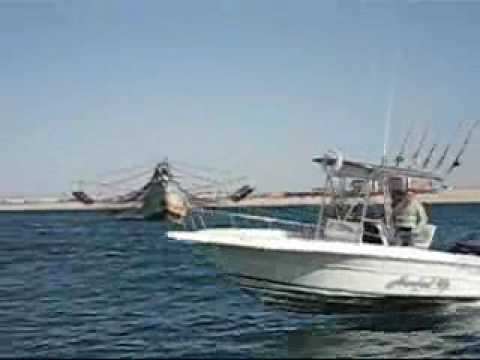 Hooked up fishing rocky point mexico just add saltwater for Rocky point fishing charters
