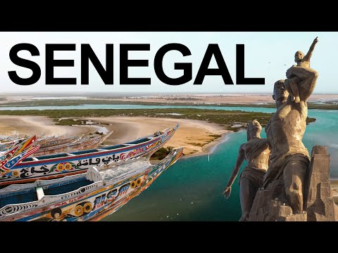 This is Africa | Senegal Safari