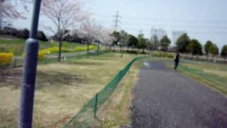 埼玉県宮代町-多目的公園-はらっぱーく thumbnail