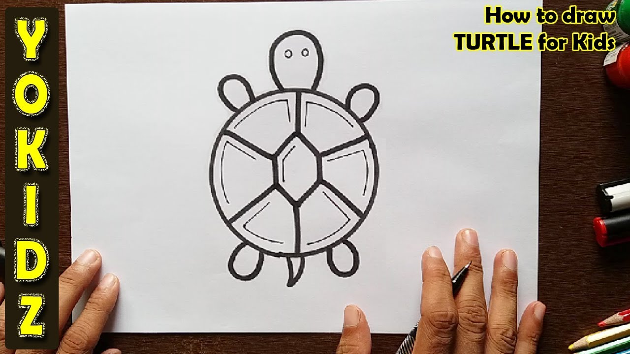 How To Draw Turtle For Kids Youtube