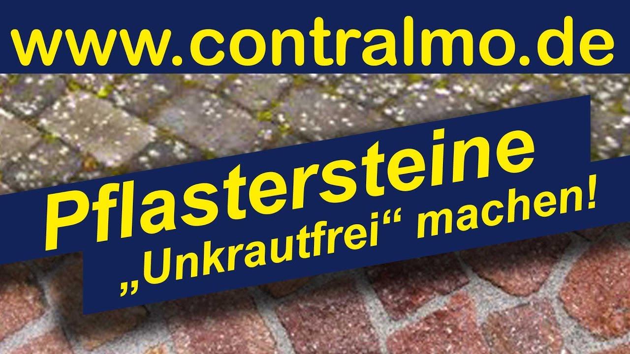 terrassen pflastersteine reinigen verfugen kein moos flechten neuer glanz fr alte steine - Terrasse Verfugen