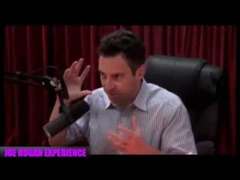 Sam Harris on Free Will (Joe Rogan Experience #543)