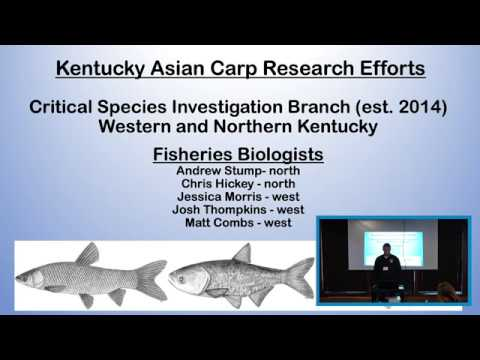 Silver, Bighead, Grass and Black carp in Kentucky: Background and Management