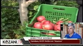 Καταπέλτης η αύξηση της φορολογίας στους αγρότες