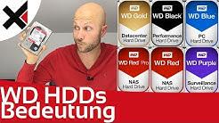WD Black, Blue, Red, Purple, Gold was die Farben bei Western Digital bedeuten | iDomiX