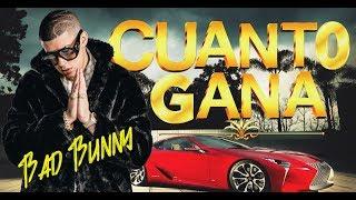 Cuanto Gana Bad Bunny | MUSICRAPHOOD