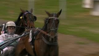 Vidéo de la course PMU PRIX VINCENNES STOLOPP - FROM ABOVE - STL DIAMANTSTOET, FORSOK 10 I MEETING 3