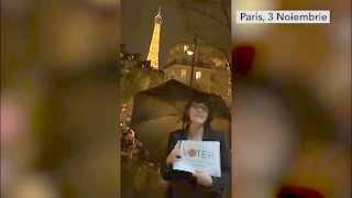 Diaspora vot Paris Nov 2014; Ambasada Romana Paris;  Taranca la Paris; sindrom Raducoiu