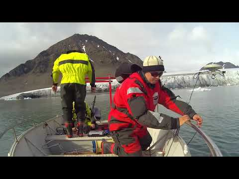 Acoustic Detection of Macroalgae and Glaciers Mapping in Arctic Fjords