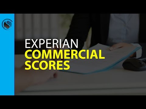 Experian Commercial Scores