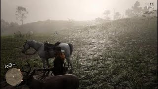Red Dead Redemption 2_20190221202745