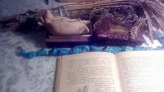 Кукурузные рыльца, описание и лечебное применение.