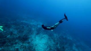 Bare feet... Splitfins... Jetfins... Freediving fins... Dol-fins...