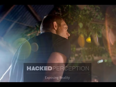 Hacked Perception - Rolling with the Soul  - Interview with Nic Gabriel