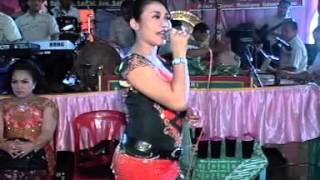 Campursari Langgam Jawa - Kelinci Ucul Guntur Madu