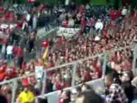 1. FC Köln in Ostholland bei den Bauern