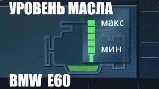 Как проверить уровень масла BMW E60. Oil level BMW E60