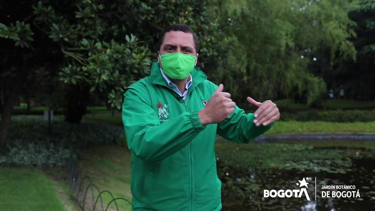 Rendición de cuentas Jardín Botánico de Bogotá - 2020