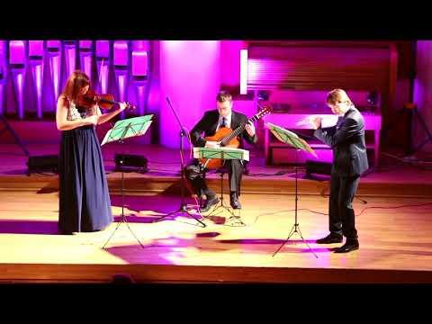 "Trio ""Flautando"". Antonio Vivaldi - The Four Seasons, Summer the STORM, III part"