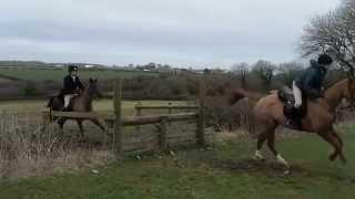 Glamorgan Hunt at Llandow
