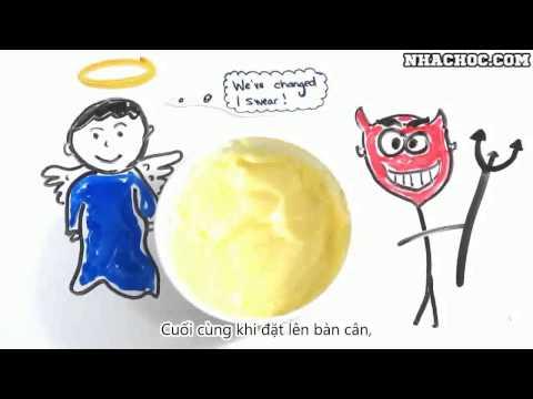 Sự khác nhau giữa Bơ Động Vật và Bơ Thực Vật