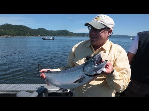 Columbia River Summer Sturgeon & Chinook Fishing