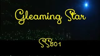 [Eng sub] SS501 - Gleaming Star LIVE