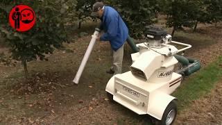 Motorlu fındık toplama makinası ile fındık nasıl toplanır ?