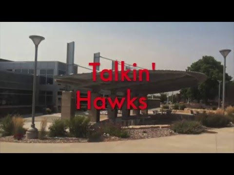 talkin'-hawks---netflix-addiction