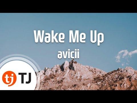Wake Me Up(Radio Edit)_avicii_TJ 노래방 (Karaoke/lyrics/romanization/KOREAN)