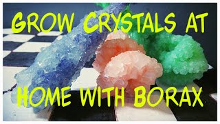 GROW CRYSTALS AT HOME WITH BORAX (Kids How To Science)