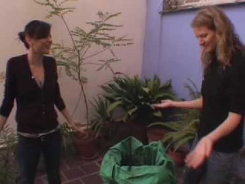 SuChin Pak smells our composting bag