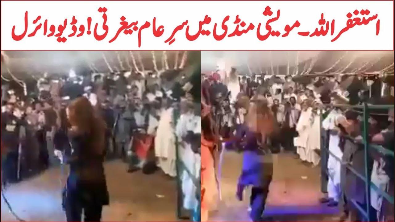 Dance In Bakra Mandi Viral Video | Eid Ul Azha 2021 | AR Videos