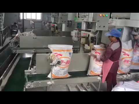 10kg,20kg,25kg,50kg-flour-powder-premade-bag-packing-machine