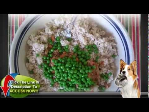 Recipes for Homemade Dog Food: Beef and Cabbage Salad and Beef and Veggie Pie