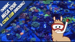 The World Wide Corals MEGA Tour & Silver Package Coral Club Unboxing