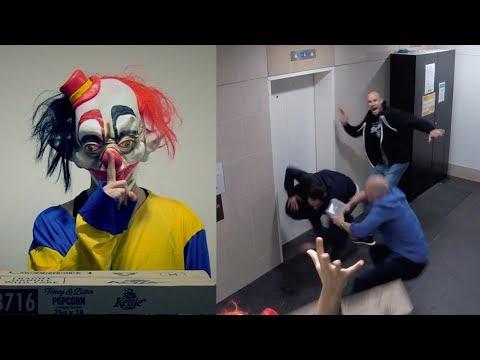 "Terrifying clown ""IT"" scares Fitzy & Wippa!!!"