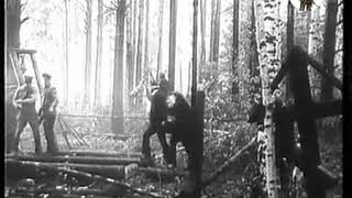 Гражданская война, 1918 год. Алапаевск.  Убийство Великих Князей Романовых
