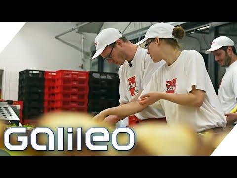 Brötchen Belegen Als Beruf: So Stressig Ist Der Job Als Bäckerzulieferer | Galileo | ProSieben