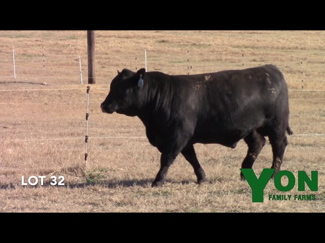 Yon Family Farms Lot 32