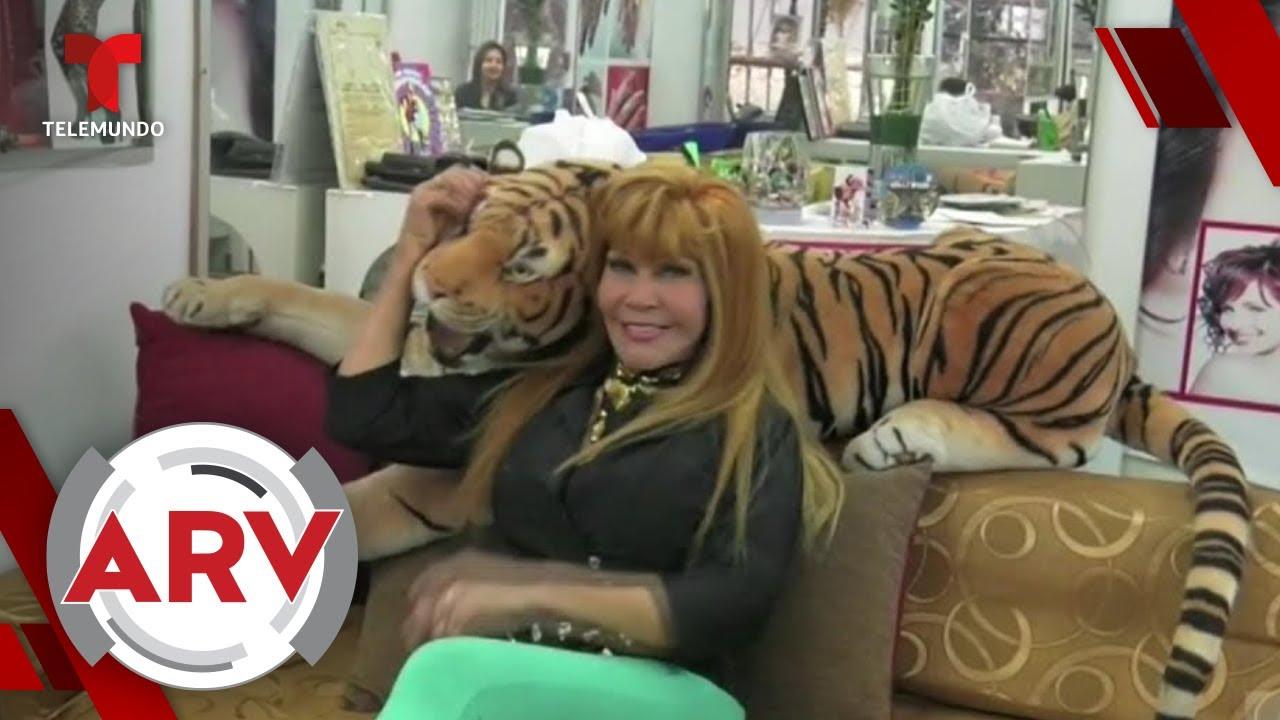 Revelan que La Tigresa del Oriente se contagió de COVID-19 | Al Rojo Vivo | Telemundo