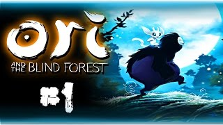 Ori and the Blind Forest (60fps)   THE LOSS...   Part 1, Playthrough Gameplay w/ facecam